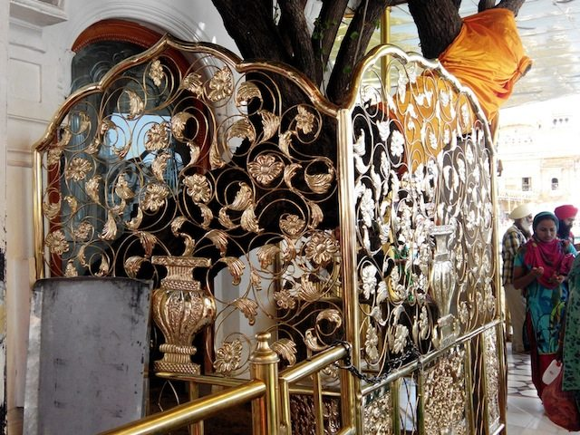 Ornamental art work covering the holy tree attracts pilgrims