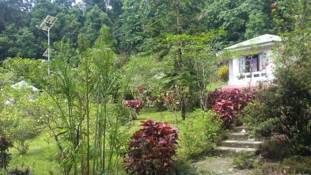 Suntalekhola WBFDC Resort