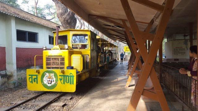 कृष्णागिरी स्टेशन पर वनरानी ट्रेन