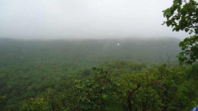 Green Valley -Looking More Greener in Rains