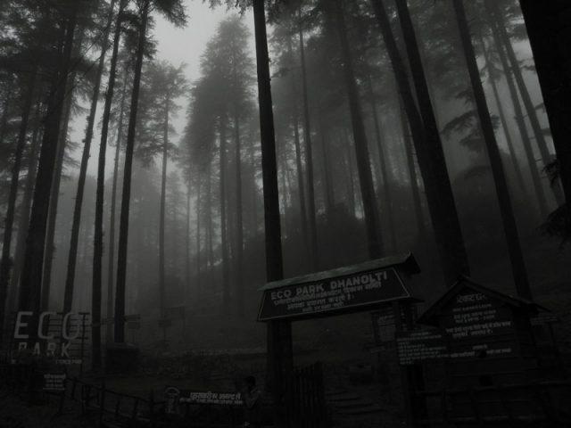 Eco Park Dhanaulti