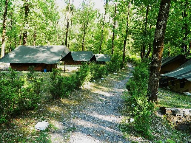 Getaway Jungle Camp