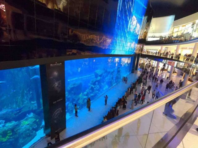 Gigantic aquarium in The Dubai Mall